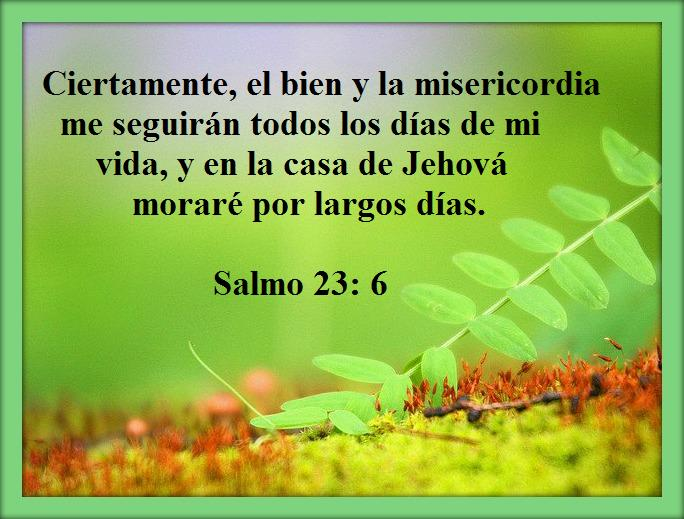 salmo 23 de la biblia catolica