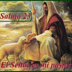 Conoce el Salmo 23 de la biblia católica