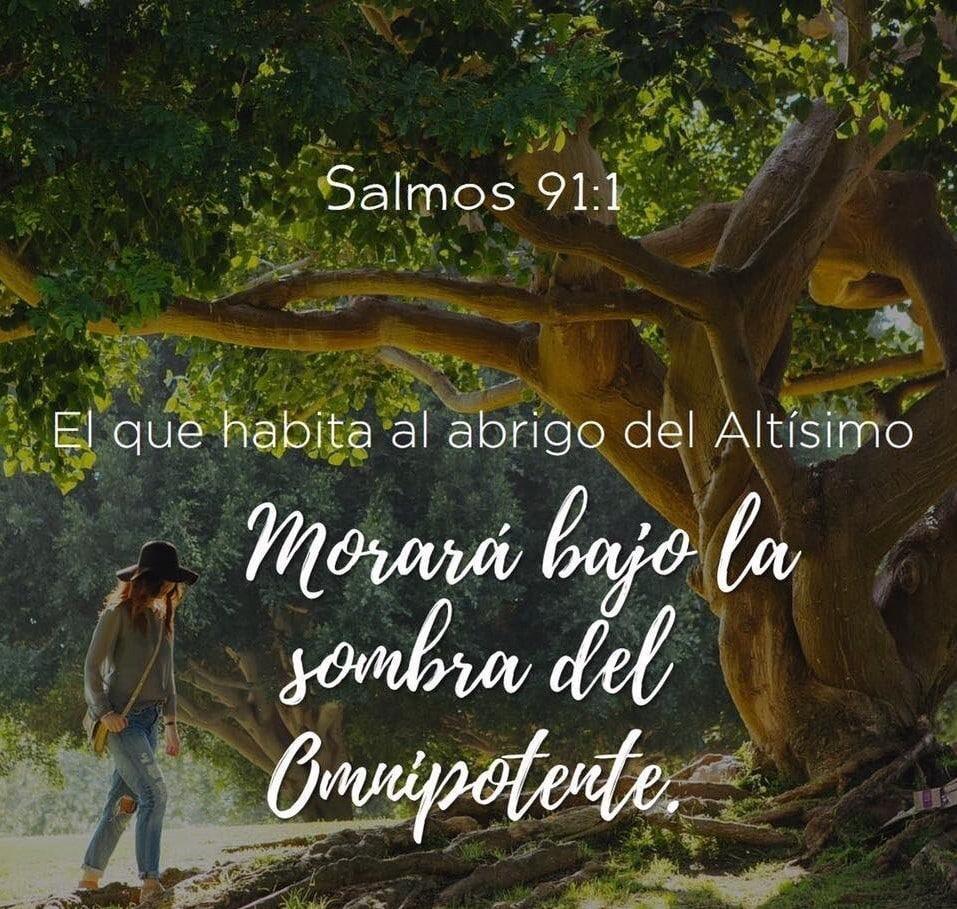 Oraciones Salmo 91
