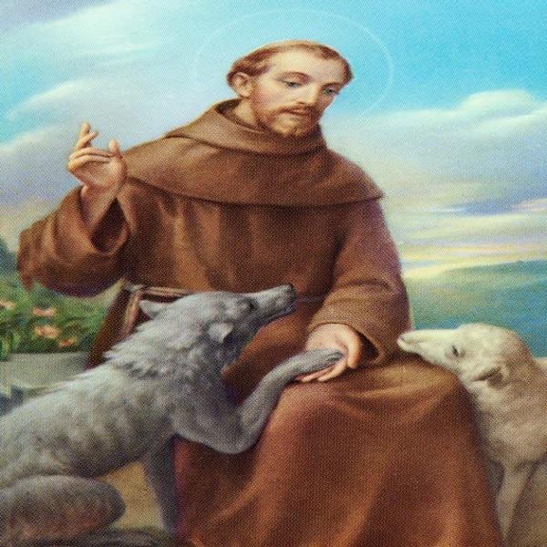 oracion a san francisco de asis para animales perdidos